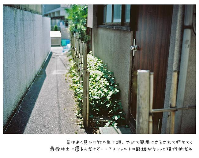 FH030035.jpg