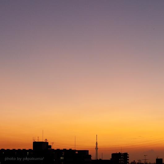 MG_3456.jpg